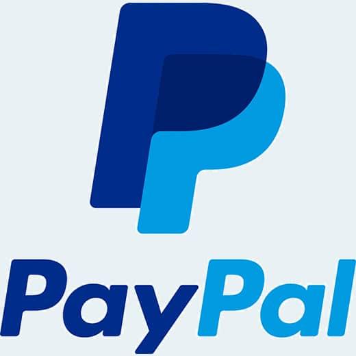 Logo PayPal Big
