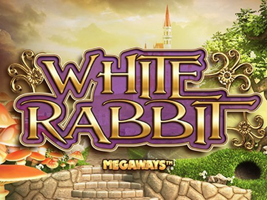 White Rabbit image
