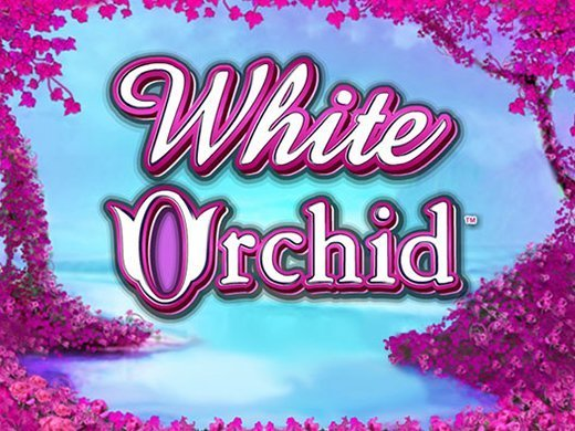 White Orchid logo1
