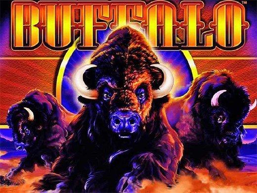 Buffalo logo2
