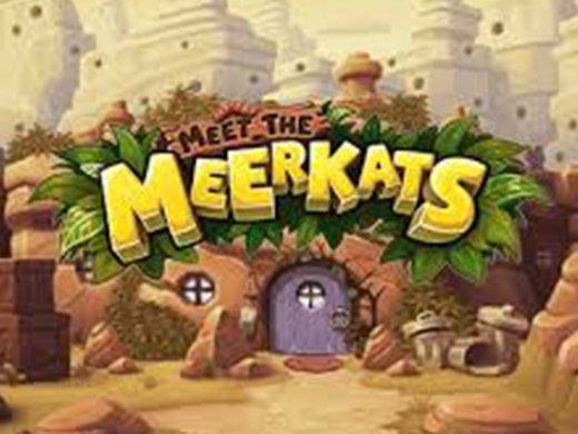 Meet the Meerkats logo