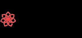 CasinoChan Logo png1