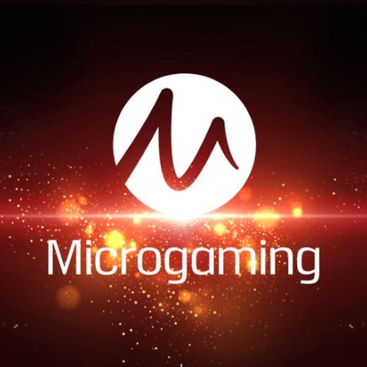 Microgaming software provider