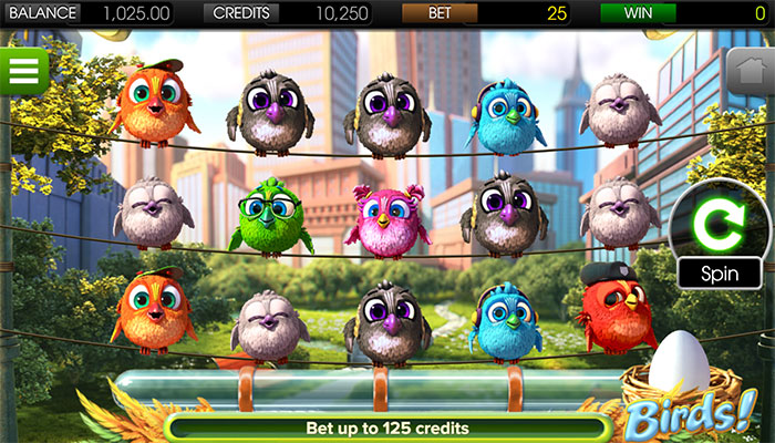 Birds Slot gameplay